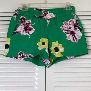 Pull-on J Crew Shorts